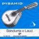 665100 LAUD Y BANDURRIA SET  – 12-string (Steel)