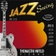 JS 025 JAZZ SWING D Nickel flat Wound 025